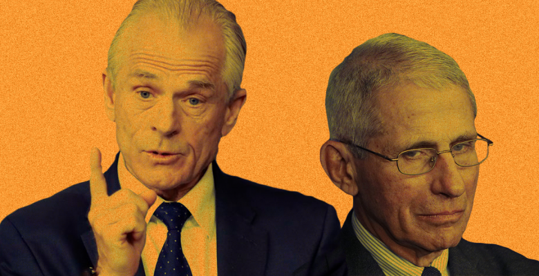 Trump Adviser Peter Navarro Gets Into Heated Argument With Anthony Fauci at Task Force Meeting