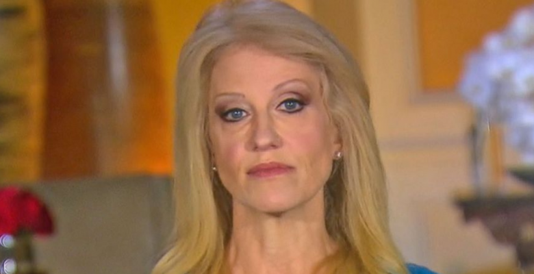 """Kellyanne Conway and George Conway Quit Jobs to Focus on """"Family"""""""