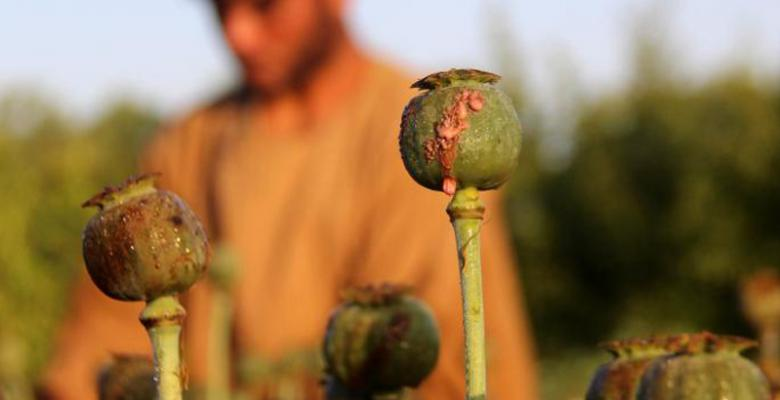 US Commences Bombings Of Afghan Opium Facilities