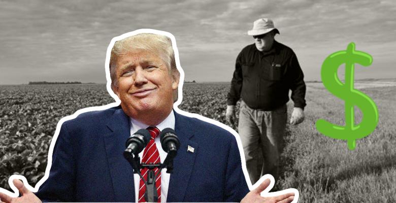 Trump farmers