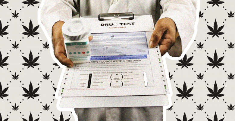 Nevada Becomes First State to Marijuana Testing of Prospective Employees