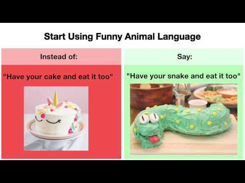 PETA: Start Using Funny Animal Language