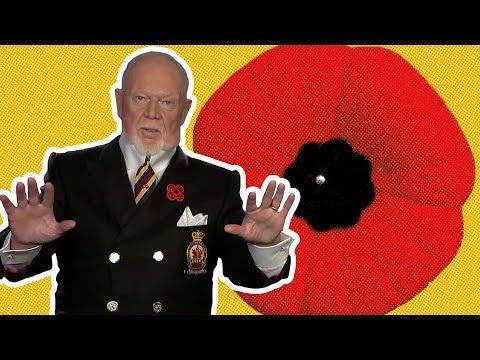 Some Thoughts On The Don Cherry/Jess Allen Controversy